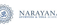 Ayurveda Consultations & Education, Austin Texas